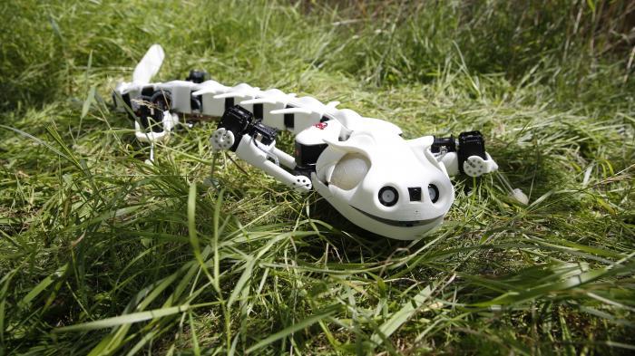 Roboter bewegt sich wie ein Salamander