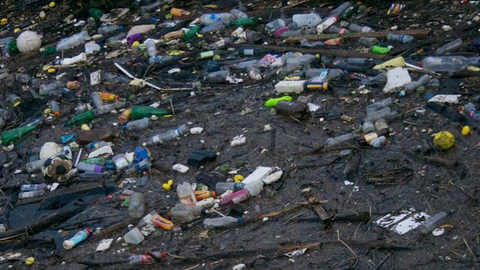 Mikroorganismen sollen Kunststoffmüll vernichten