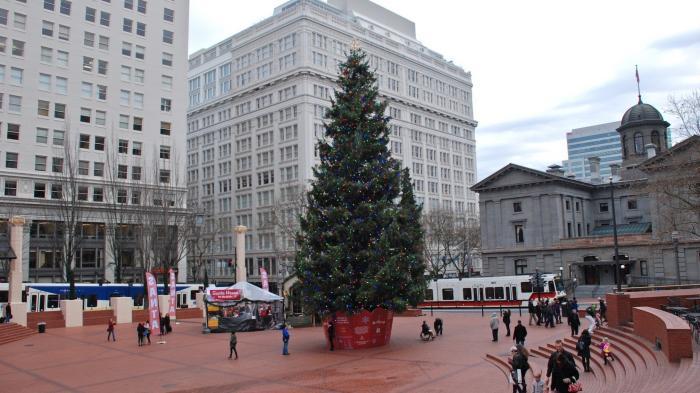 Großer Christbaum auf öffentlichem Platz