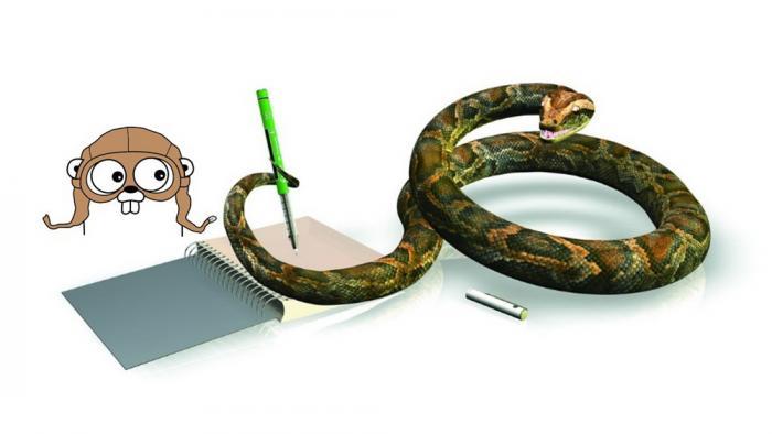 Google bringt eine Python-Runtime in Go