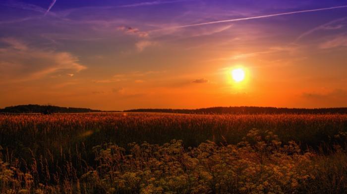Ruhe, Sonne Sommer