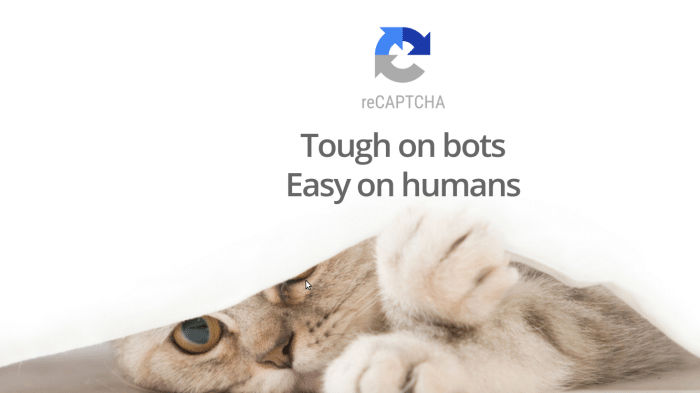 "Katze, darüber ""reCpatcha - Tough on bots - Easy on humans"""