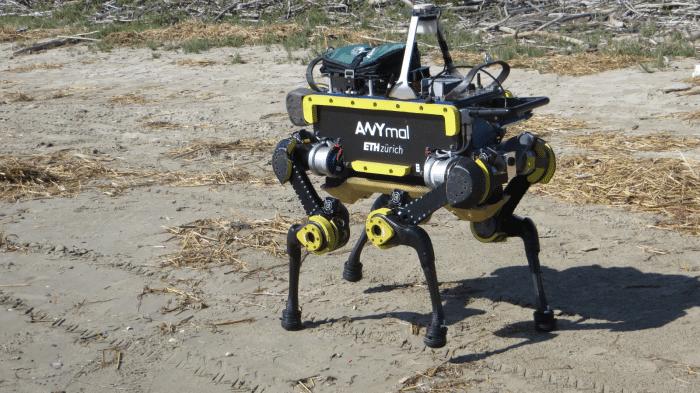 ERL Emergency: Roboter stolpern durch den Sand