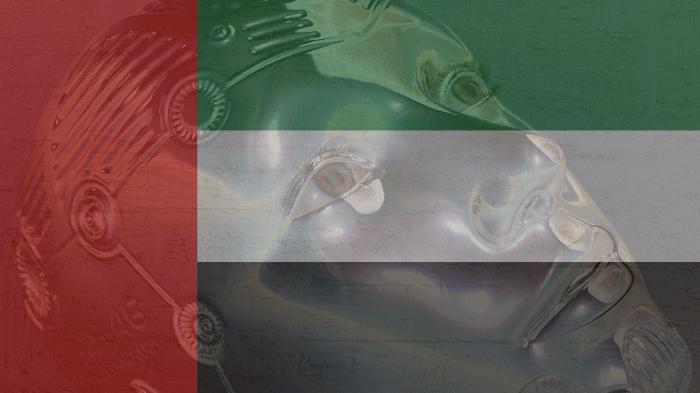 Emirate richten Ministerium für Künstliche Intelligenz ein