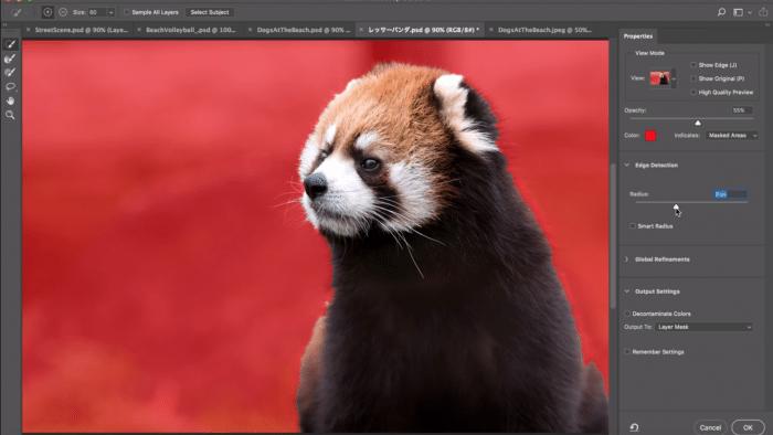 Photoshop-Ausblick: Auswahl mit künstlicher Intelligenz