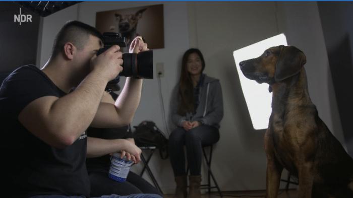 Mediathek-Tipps zum Thema Fotografie: Hunde, tierisch gute Modells