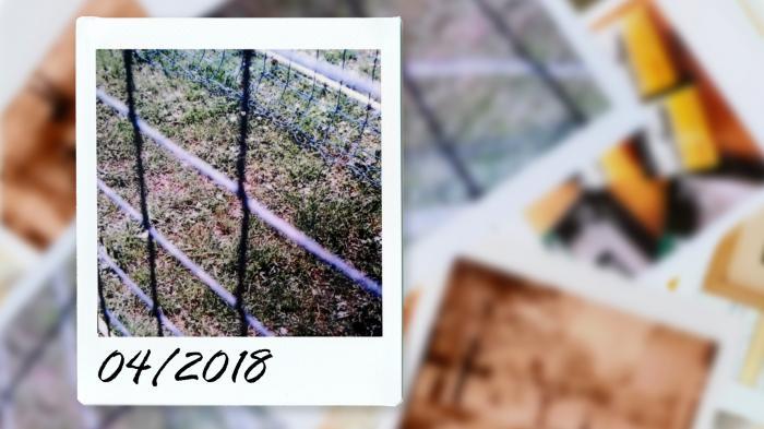 Kommentar: Wer kommt und wer nicht kommt – der Fotografie-Monatsrückblick