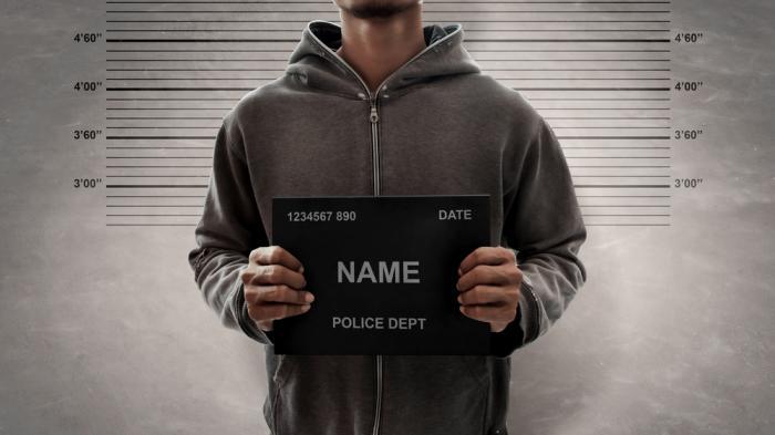 Polizeifoto, Mugshot