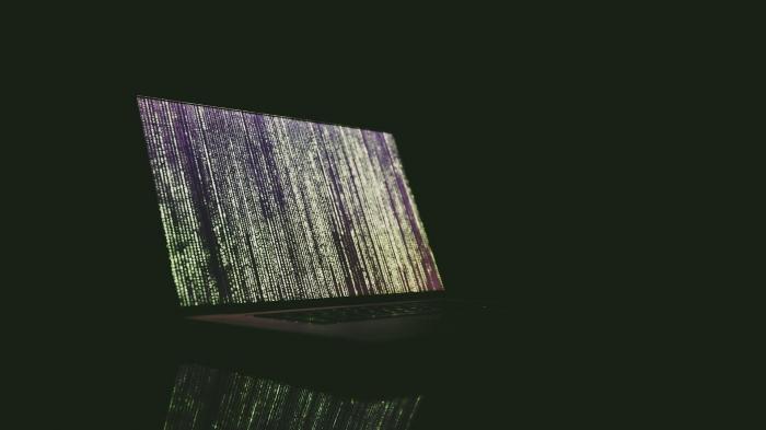 Cyber-Sicherheitspolitik: Fünf Prozent Zero-Day-Lücken für staatliche Überwachung von Kriminellen