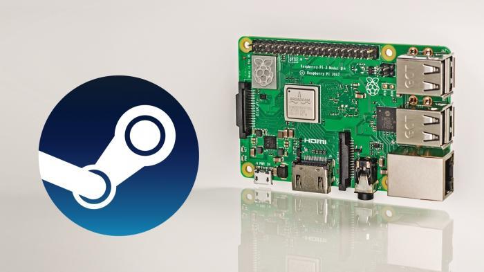 Raspberry Pi neben Steam Logo