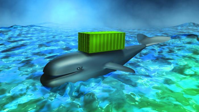 Anwendungscontainer: Docker startet einen offiziellen Marktplatz