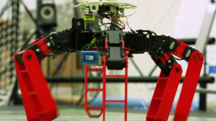 AntBot: Autonomer Roboter findet ohne GPS nach Hause