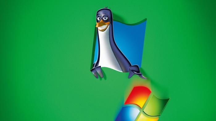 Linux statt Windows: Einfach wechseln
