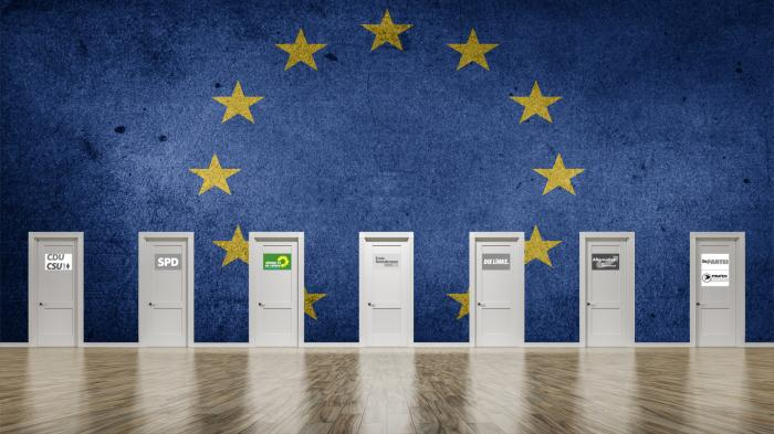 Programme und Positionen zur Europawahl 2019: Die Grünen