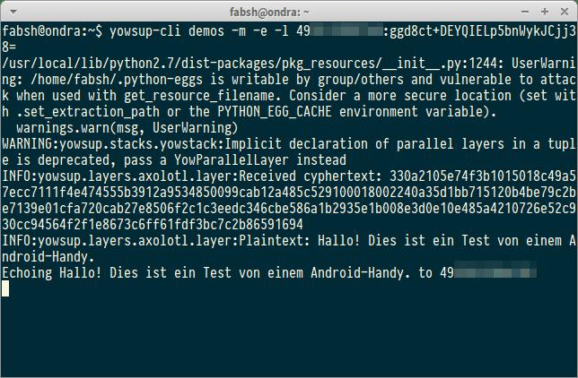 Hier zeigt der Echo Client von yowsup die verschlüsselt eingehende Nachricht sowie den Klartext nach der Entschlüsselung durch die Axolotl-Bibliothek.