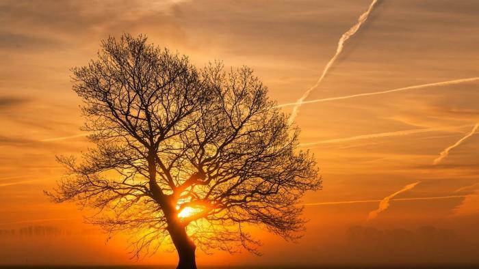 Die Beziehung von Mensch und Natur – die Bilder der Woche (KW 44)