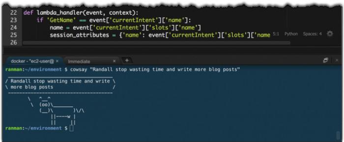 Der Editor bietet direkten Zugriff auf die Kommandozeile von AWS.