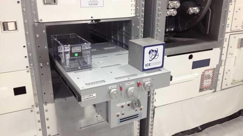 ICE Cubes: DIY-Experimente auf der ISS