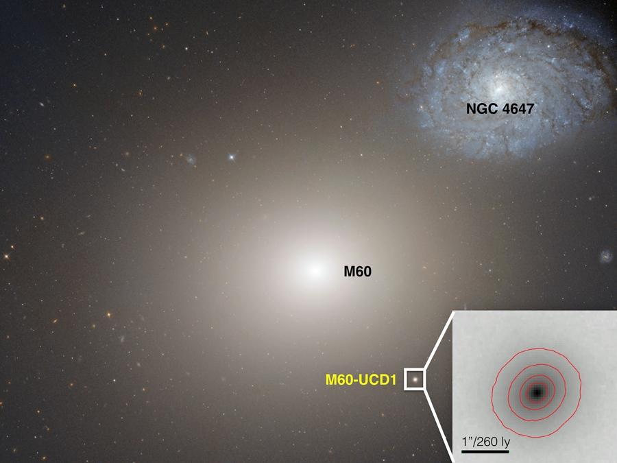 NASA/Space Telescope Science Institute/ESA