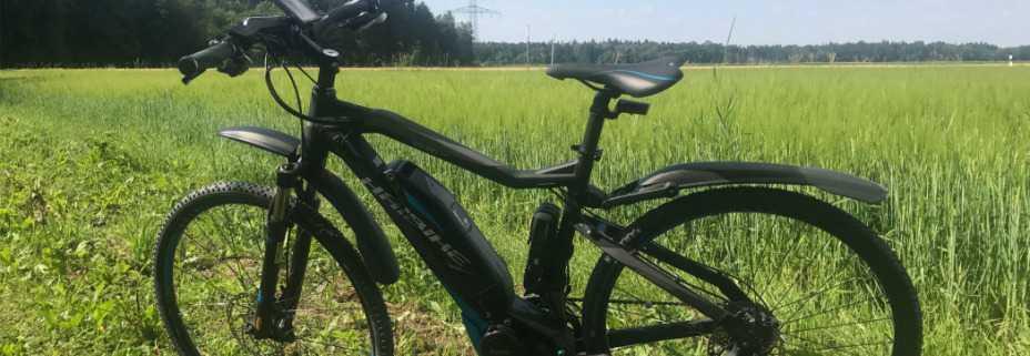 E-Bikes in 4,3 Millionen Haushalten