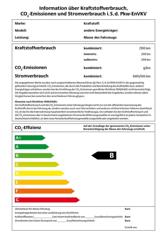 Muster des ab Herbst 2011 geplanten Energie-Labels für Pkw